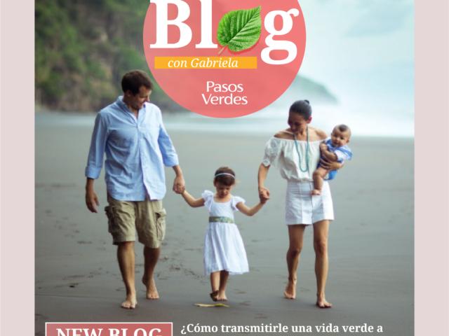 Blog-Mayo