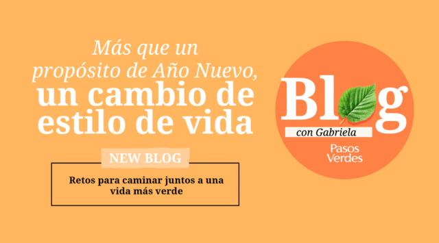 Para-el-blog-Enero-1